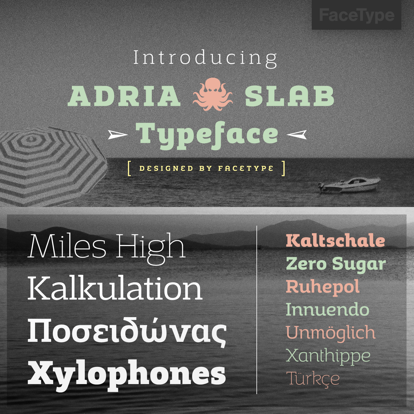 Download Adria Slab for Free