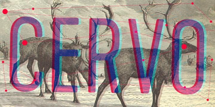 Download Cervo Font, Starting from $2.50