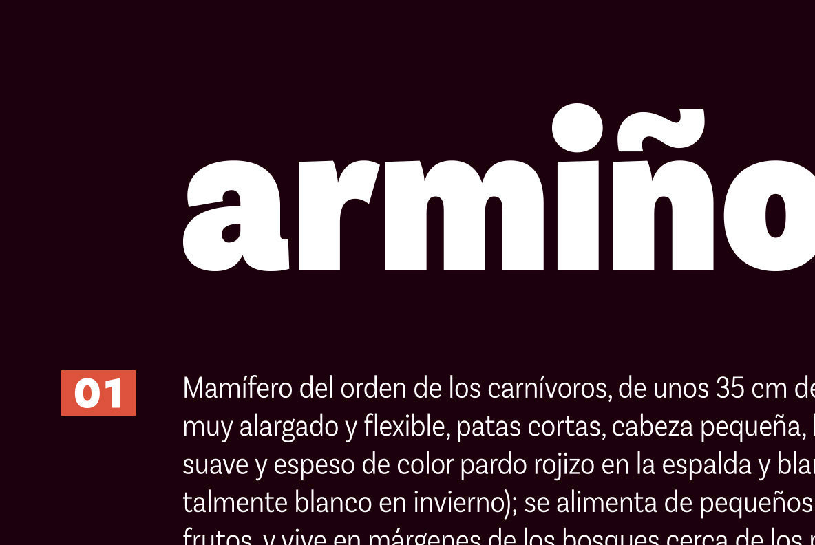 Basic Sans Cnd From LatinoType Strikes A Neutral Balance For Design Adaptability