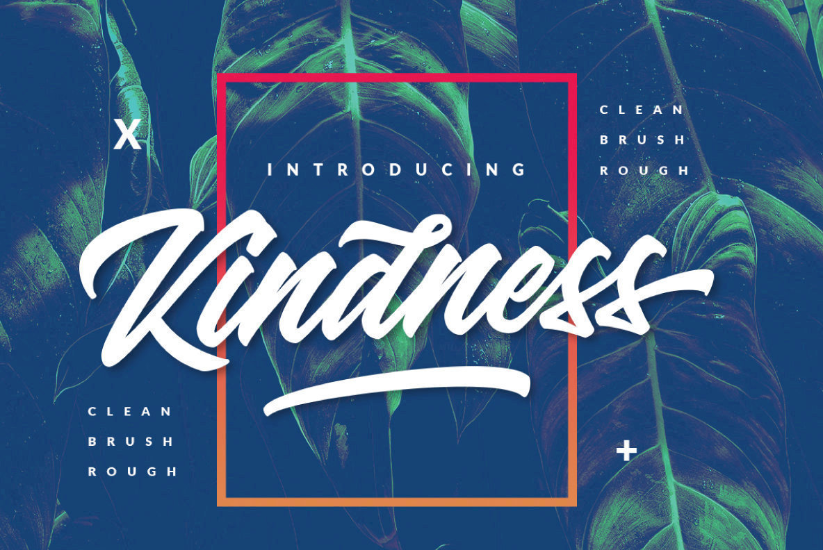 Kindness: An Intensely Passionate Brush Script From Dirtyline Studio